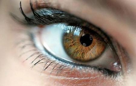 Глаз – это оптическая система, через которую мы рассматриваем окружающий мир. Как и объектив фотоаппарата, она состоит из нескольких линз, точнее, двух: роговицы (передней прозрачной оболочки глаза) и хрусталика («линзочки» внутри глаза) Преимущества и недостатки основных видов коррекции зрения Очки Контактные линзы Хирургическая коррекция зрения Если обе линзы настроены правильно (эмметропия), то фокусируют лучи света, […]